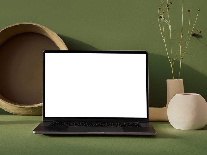 Environmental Impact of Websites