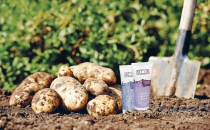 Der Saft der Kartoffel ist ein Inhaltsstoff von Naturkosmetika.