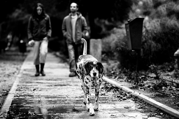 Life_in_Black_and_White_by_gilad