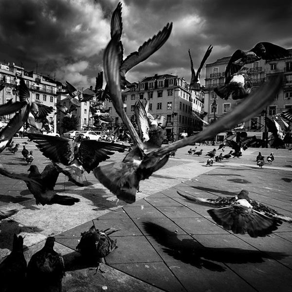 Lisbon___1_by_MisterKey