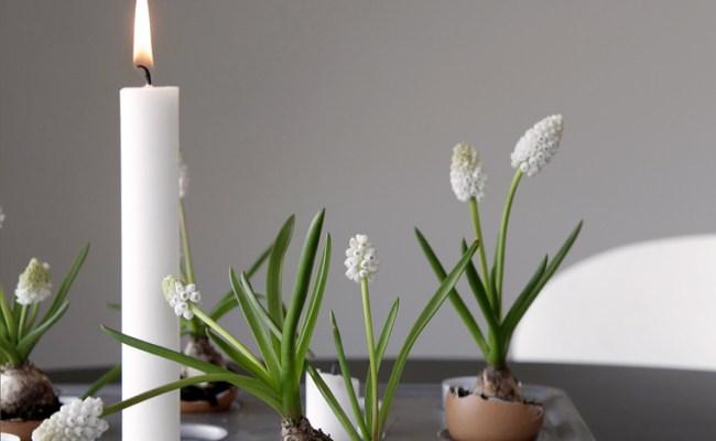 10 Easter Decoration Ideas Stylizimo
