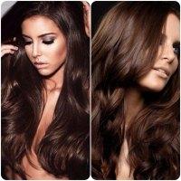 Bestchocolatebrownhaircolors New Medium Hairstyles Of ...