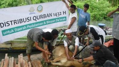 Photo of Inilah Binatang yang Halal dan Haram