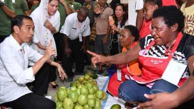 Photo of Menang 90 Persen, Jokowi Harusnya Berkantor di Papua