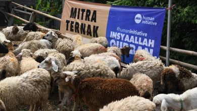 Photo of Human Initiative Distribusikan Kurban ke Berbagai Daerah
