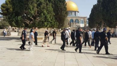 Photo of Israel Makin Brutal, Konspirasi Besar Menarget Al-Aqsa
