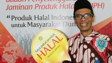 Photo of Sertifikasi Halal BPJPH: Daftar Manual, LPH yang Dipilih LPPOM MUI