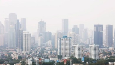 Photo of Awas, Polusi Udara bisa Tingkatkan Risiko Terkena Glaukoma