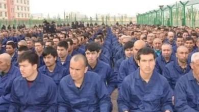 Photo of Dokumen Bocor, Xi Jinping Terlibat dalam Penahanan Sejuta Muslim Uyghur