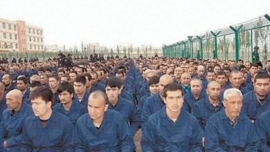 Photo of Terkait Perlakuan terhadap Uighur, China Klaim Didukung Negara-negara OKI