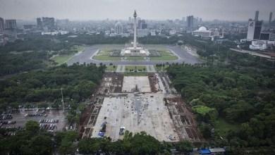 Photo of Kontraktor: 190 Pohon di Monas Dipindah Dinas Kehutanan, Bukan Ditebang