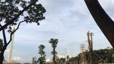 Photo of Sekda DKI: Revitalisasi Monas Terpaksa Tebang 106 Pohon, Diganti Tiga Kali Lipat