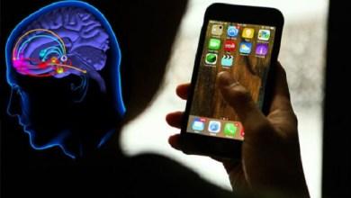Photo of Wah, Otak Pecandu Smartphone Ternyata Serupa dengan Pecandu Narkoba