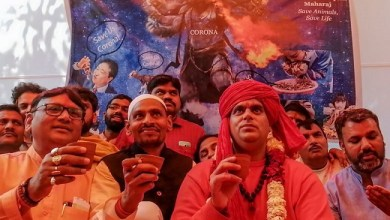 Photo of Tangkal Corona, Organisasi Hindu di India Pesta Minum Kencing Sapi