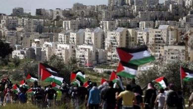 Photo of MUI: Aneksasi Israel Atas Palestina adalah Penjajahan Nyata Abad ke-21