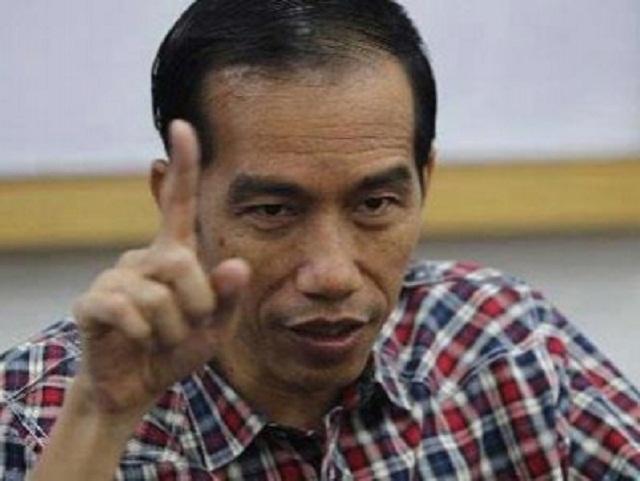 Joko Widodo (foto: istimewa)