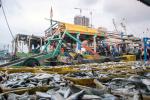 Sebut Tidak Banyak Ikan di Muara Angke, Bang Sani: Pak Ahok Tidak Pernah Ke Sini