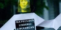 Ini Sembilan Tren Petisi Lingkungan di Indonesia
