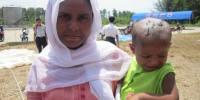 KNSR Upayakan Lahan Baru Tampung Pengungsi Rohingya