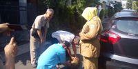 Sudin KPKP Tangkap 9 Kucing Liar Demi Kenyamanan Pengunjung Monas
