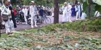 DPRD DKI: Ada Dana Taktis yang Cukup Besar untuk Perbaikan Taman