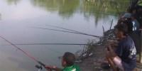 Suka Mancing Ikan Nila? Ini Cara dan Umpannya Agar Strikeeee