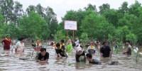 Peduli Lingkungan Hidup, Yayasan AHM Tanam Pohon Rambai di Kalsel
