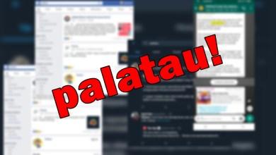 Photo of 'Kaulah palatau'