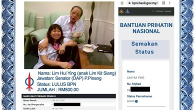 "Photo of Anak Kit Siang turut ""Lulus BPN""?"