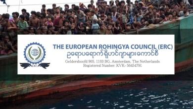 Photo of NGO Rohingya antarabangsa kerja tiada gaji