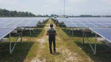 Photo of Bukan sekadar ladang solar, tetapi sumber tenaga masa depan