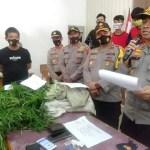 Polisi Temukan Ladang Ganja Siap Panen Di Lembah Masurai Merangin