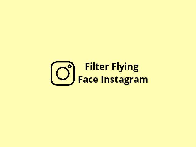 Filter Flying Face Instagram