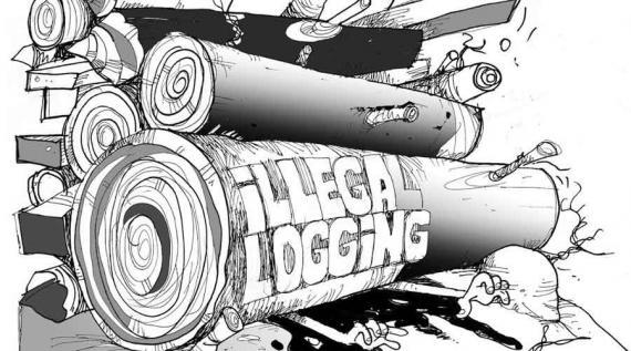 Sejumlah Anggota Reskrimsus Polda Kalsel Turun ke Lokasi Selidiki Pambalakan Liar Hutan Lindung
