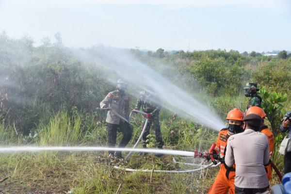 AKSI Penanggulangan Karhutla, Wakapolda Kalsel Nilai Gerakan di Lapangan Terkolaborasi