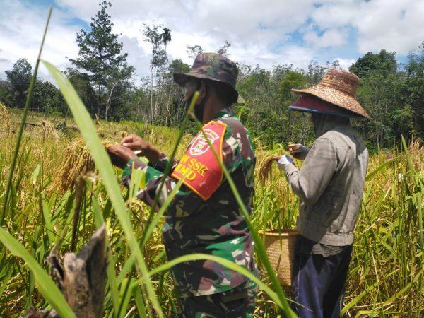MENEMBUS BELANTARA Buka Pariangan Menuju Kampung Pariwisata