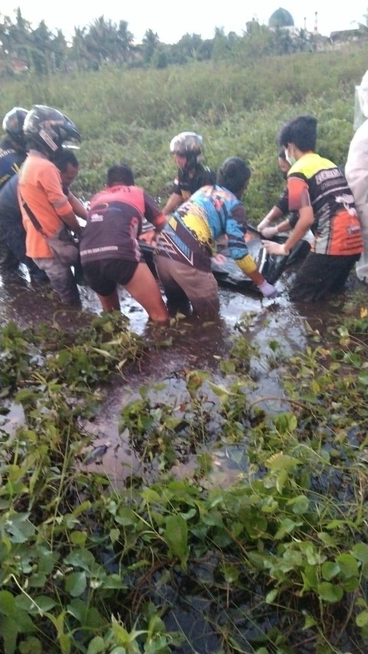 TAK BERNYAWA Terlilit Tumbuhan di Rawa-Rawa Kagetkan Pemancing