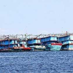 MULAI Meningkat Kapal Pengangkut Ikan Sandar di Pelabuhan Perikanan