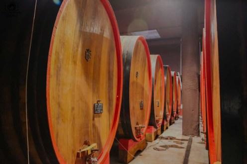 Armazenagem dos vinhos da Antinori nas Vinicolas da Toscana
