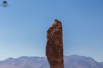 Monjes de La Pacana no Salar de Tara