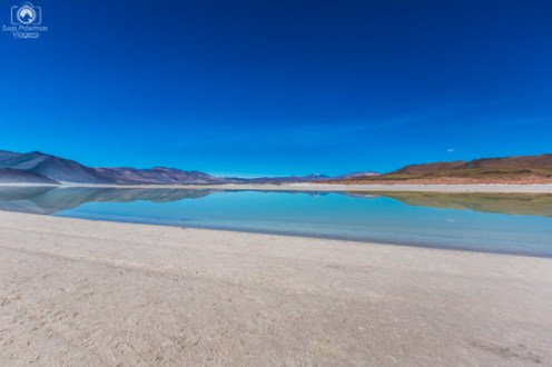 Salar de Talar no Roteiro do Atacama de 5 dias