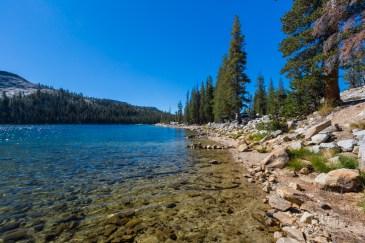 Amanhecer no Tenaya Lake no Parque Nacional Yosemite