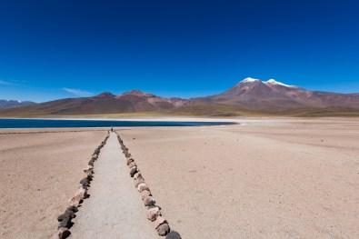 Laguna Miscanti - Atacama