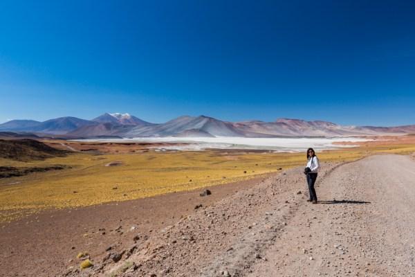 Vista ampla do Salar de Talar / Piedras Rojas