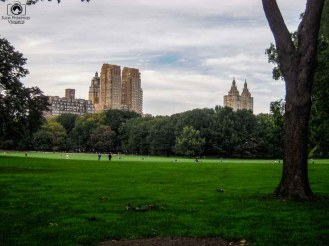 Sheep Meadow Praça no Central Park em o que fazer em Nova York