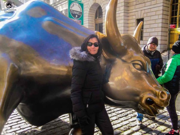 Vista do Famoso Touro de Wall Street em o que fazer em Nova York