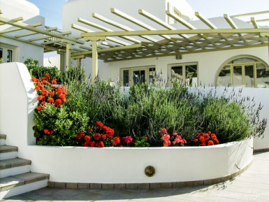 hotel pelicano em Onde ficar em Mykonos Grécia