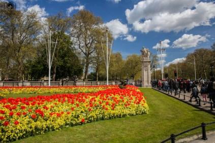 Jardins ao lado da The Mall Avenue em O Que Fazer em Londres