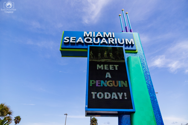 Miami Seaquarium nas atrações em Miami