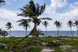 Alice Wainwright Park em o que fazer em Miami Florida